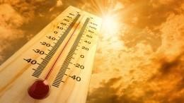 Гидрометцентр предупредил обаномальной жаре вряде регионов России