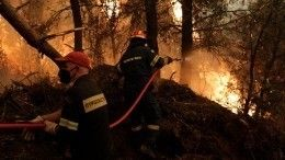 Премьер Греции назвал лесные пожары встране бедствием беспрецедентного масштаба