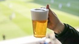 Пиво настадионах снова могут разрешить. Ради детского спорта