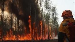 Авиация стала главным оружием вборьбе спожарами вЯкутии, ноона неможет взлететь