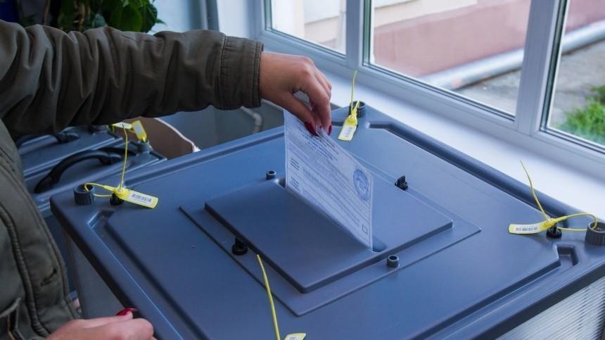 Политолог рассказал озападном опыте «кнута ипряниках» навыборах