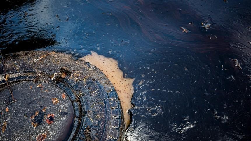 Пофакту разлива нефти врайоне Новороссийска возбуждено уголовное дело