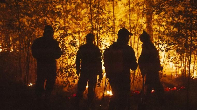 «Умирать начнут городами»: Эколог— обопасности лесных пожаров вмире