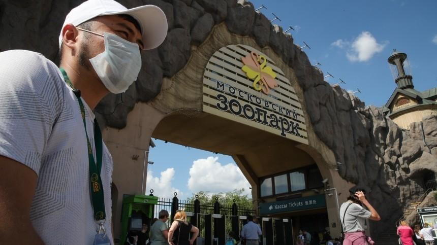 Москва возвращается судаленки иоткрывает для посещения зоопарки