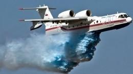 Очевидцы сняли навидео момент падения пожарного самолета вТурции