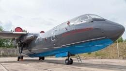 Первое фото разбившегося вТурции пожарного самолета Бе-200