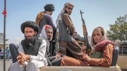 Американская демократия схолодным безразличием покинула прирученный Афганистан