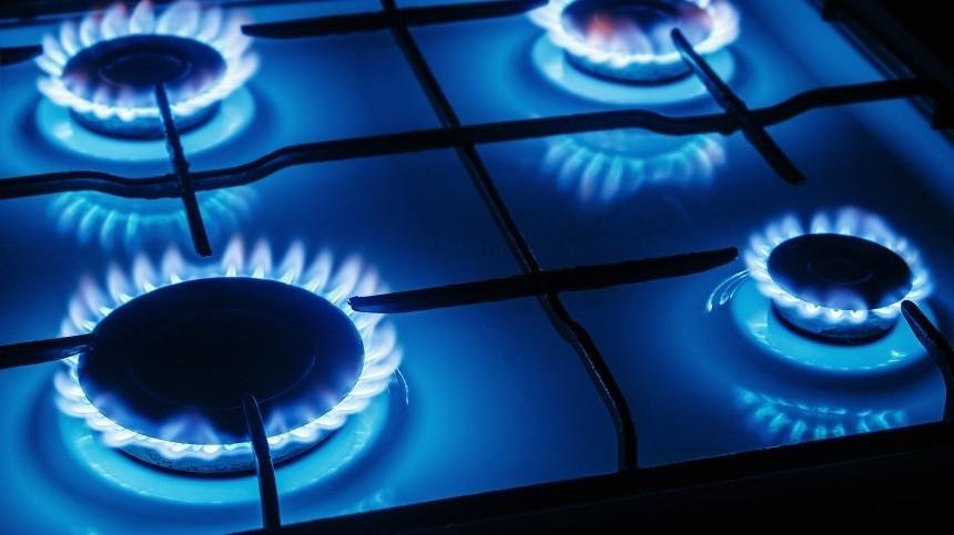 Названы российские города, которые получат газ вприоритетном порядке