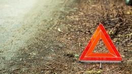 Врезультате ДТП савтобусом вИвановской области пострадали пятеро детей ипятеро взрослых