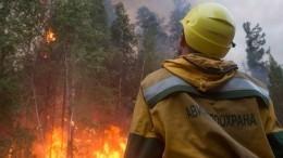 ВМЧС заявили остабилизации ситуации спожарами вЯкутии