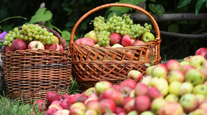 Рецепты блюд изяблок иглавные приметы: Как правильно провести Яблочный спас?