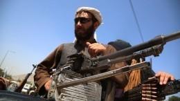 Россия планирует эвакуационный спецрейс вКабул доконца августа