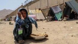 Вопросы без ответа: мировая реакция наприход Талибана* квласти вАфганистане