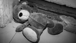 Волонтеры заявили, что найденное вТюмени тело девочки могли подкинуть