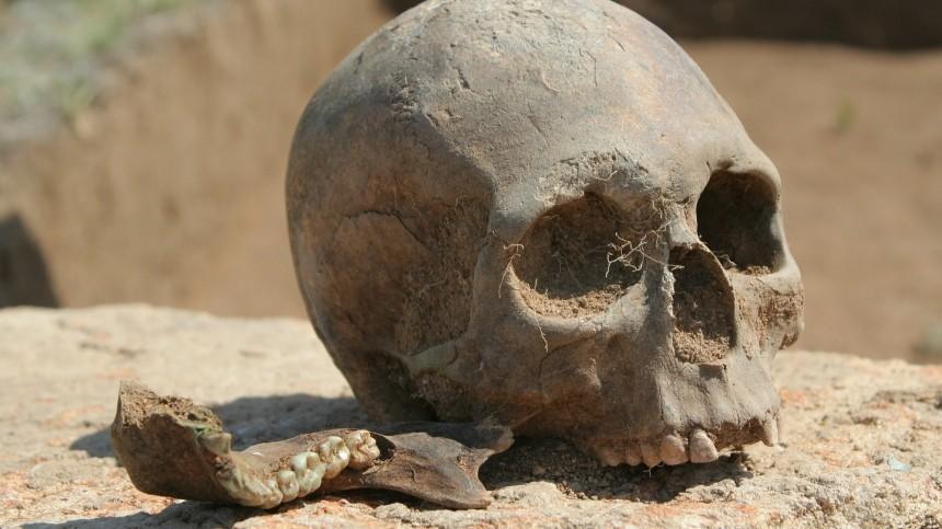 Человеческие останки нашли научастке вЛенобласти: похоронили втряпке