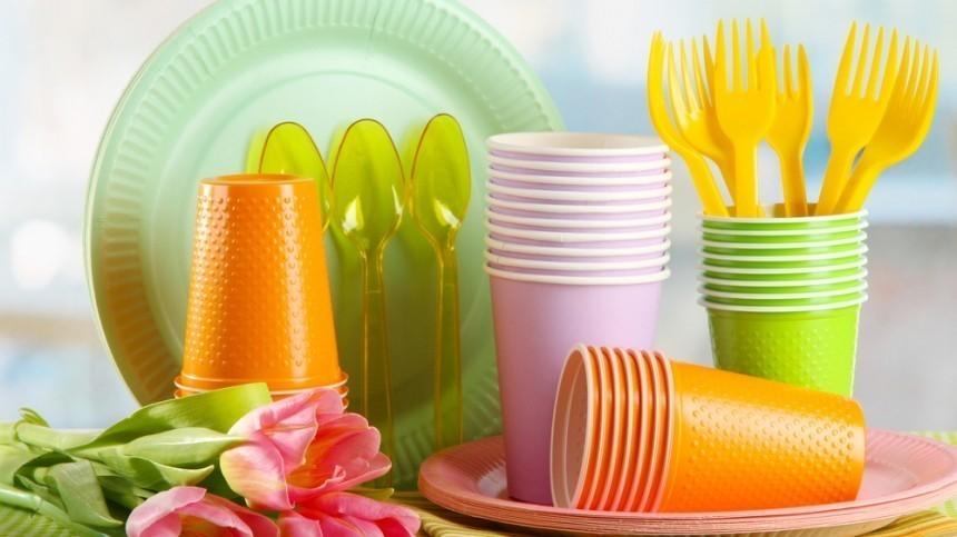 ВРоссии 28 видов одноразовых товаров могут попасть под запрет