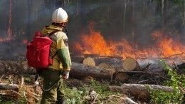 Мобильный отряд врачей иволонтеров летит вЯкутию устранять последствия пожаров