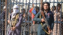 Талибы нарисовали «красные линии» для США ипригрозили последствиями