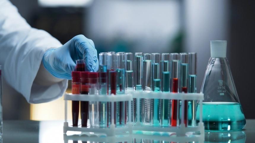 Обнаружено антитело, защищающее отвсех штаммов коронавируса