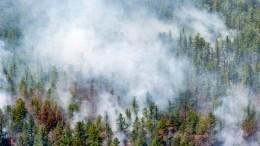 Доброволец погиб при тушении природного пожара вОренбургской области