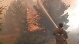 Медицинский десант выехал для лечения тушивших пожары жителей Якутии