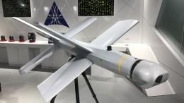 Минобороны РФутвердило технический облик самоуничтожающихся дронов «Ланцет»