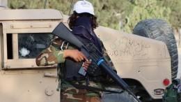 Шойгу рассказал обобъемах брошенного США оружия вАфганистане