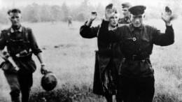 Бастрыкин поручил проверить данные опреступлениях нацистов вКиевской области