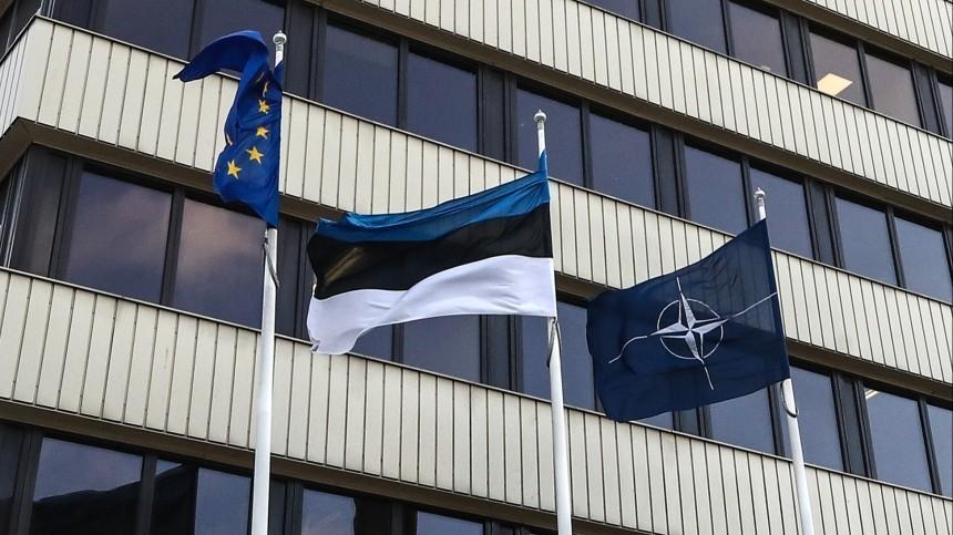 ВМИД Эстонии отказались выдавать визу российскому дипломату
