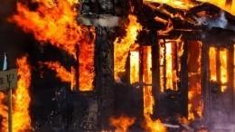 Дети спасли село отпожара вСаратовской области