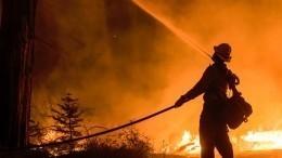 Огонь отлесных пожаров добрался дожилых домов вКалифорнии
