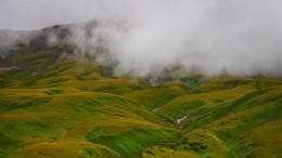 Угроза извержения вулкана Шивелуч нависла над жителями Камчатки