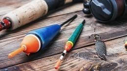 Лайфхак: Как сделать рыболовные снасти своими руками?