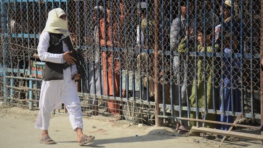 Сопротивление Панджшера заявило обобъединении «Талибана»* с«Аль-Каидой»*