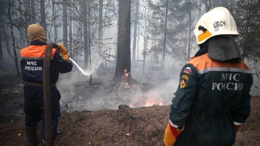 Путин вручил награды заотвагу вборьбе слесными пожарами ипаводками