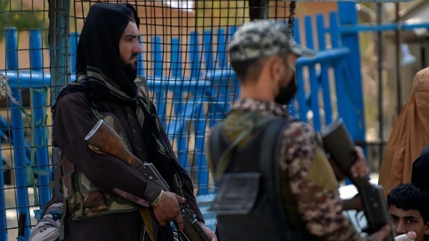 Талибы пригрозили наказать боевиков, стреляющих ввоздух