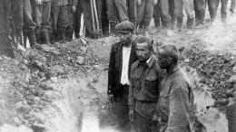 Рассекречены самые жуткие зверства японских ученых вотношении советских пленных