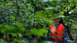 Одежда накустах: видео сместа обнаружения тел двух школьниц вКемеровской области