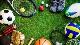 ВРоссии отрылись сразу 16 новых спортивных объектов