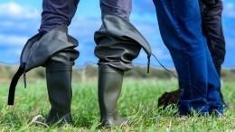 Ивводу, ивгрязь: Как выбрать одежду иобувь для рыбалки?