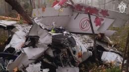 Следователи осмотрели место крушения L-410 под Иркутском