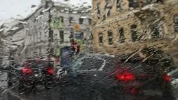 Поваленные деревья иподтопления: последствия свирепого урагана вПетербурге