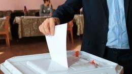 Член ОПМалькевич заявил обувеличении количества фейков перед выборами