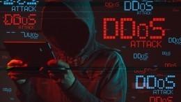 ВНОМ назвали страны, стоящие заDDoS-атаками наголосовании вРоссии