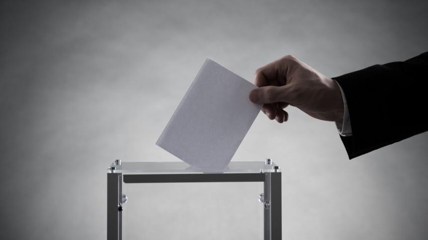 Иностранные эксперты дали высокую оценку ходу голосования вГосдуму