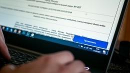 «Электронные» выборы могут начать проводить повсей России