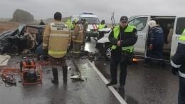 Двое погибли исемеро пострадали вДТП смикроавтобусом под Тамбовом
