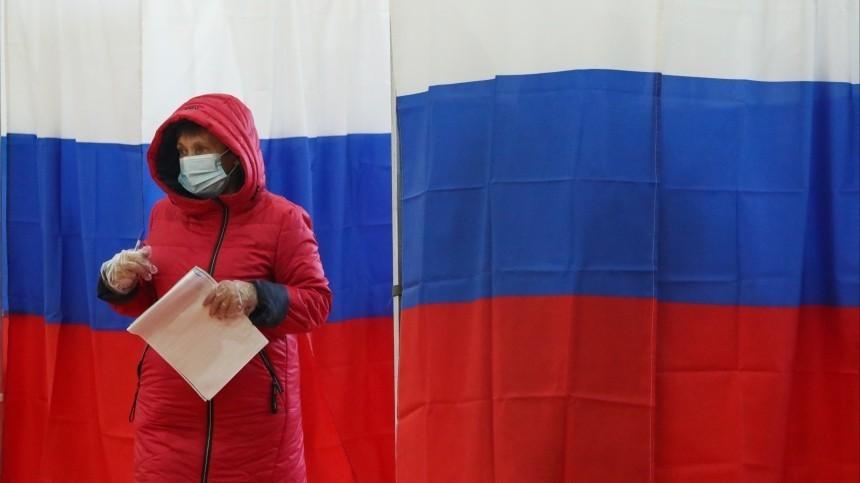 Политолог Чеснаков заявил отриумфе дистанционного электронного голосования