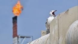 Аналитик оценила призыв Мишустина готовиться кпоэтапному отказу отнефти игаза