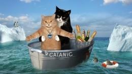 Хозяин икот повторили культовую сцену из«Титаника»